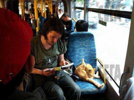 James & Bob - Bus