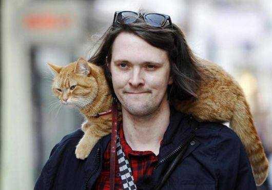 James & Bob - Cat Drape