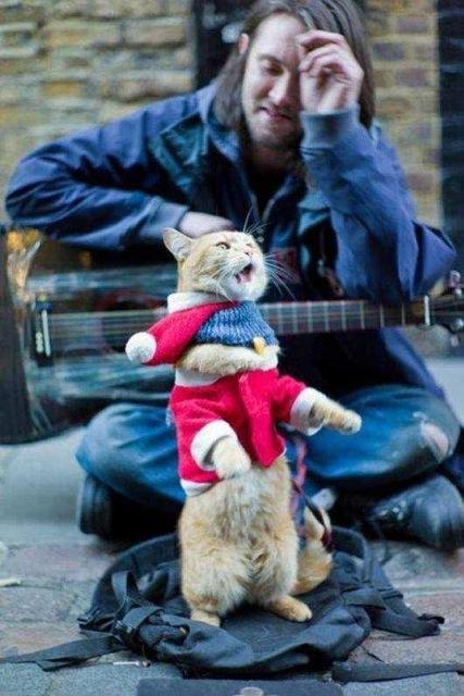 James - Bob performs