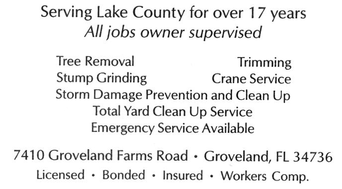 South-Lake-Tree-Service-back